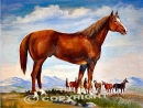 A 1/4 Horse Painting -Available