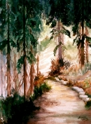 Forest Path-SOLD